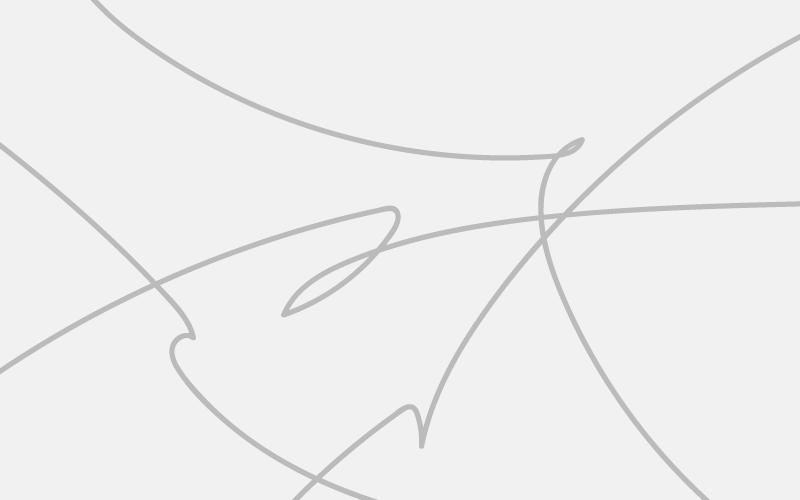 svg-path-animation-icatch